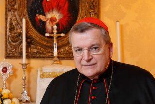 """El cardenal Burke se declara dispuesto a """"resistir"""" al Papa"""