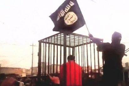 El vídeo del macabro desfile en jaulas de los kurdos que van a ser quemados vivos por el EI