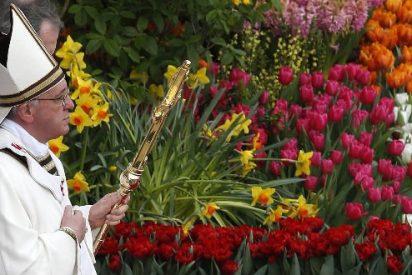 La primavera de Francisco desde la base eclesial