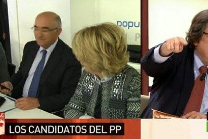 """Marhuenda: """"Mi perra Lolita tendría mayoría absoluta en Madrid si se presentara por el PP"""""""