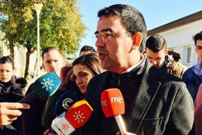 """El PSOE pide que se """"paralice definitivamente"""" la reforma universitaria del PP"""