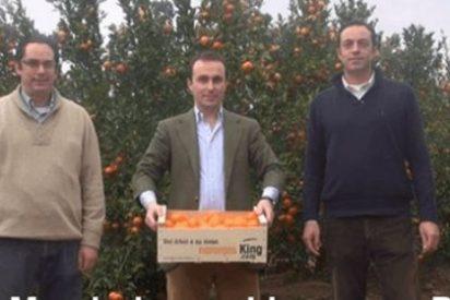 Nace Naranjas King, una tienda VIP para comprar naranjas online