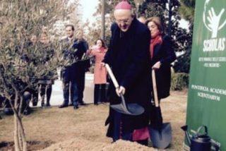 Osoro y Botella plantan un olivo por la paz en la plaza de Colón
