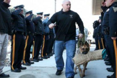 La emocionante despedida a un entregado perro policía antes de ser sacrificado