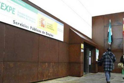 El descenso del paro juvenil en Cáceres ratifica el cambio de rumbo que está liderando el PP