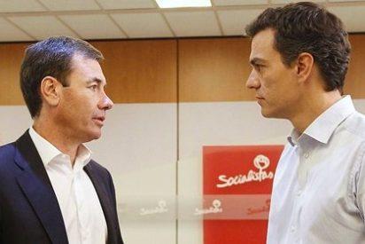 Podemos se frota las manos ante la espiral autodestructiva del PSOE