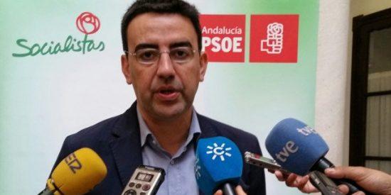 """Jiménez (PSOE): """"Los ciudadanos van a castigar en las urnas a los partidos que no estén a la altura de Andalucía"""""""