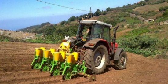 82 M€ destinados a la modernización de la industria agroalimentaria andaluza