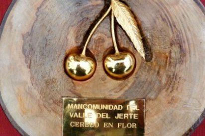 ACOCYREX, Asociación de Cocineros y Reposteros de Extremadura, premio Cereza de Oro 2015