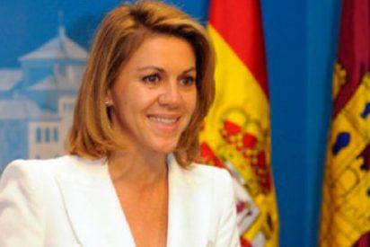 """Francisco Núñez (PP): """"Castilla-La Mancha atrae turismo y crea empleo de la mano de Cospedal"""""""