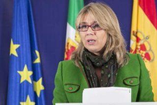 Cristina Teniente anuncia un Plan Integral de Apoyo a las Familias Numerosas