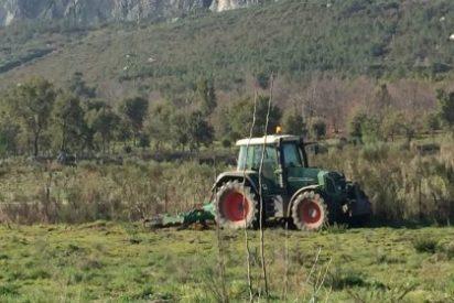 Valencia de Alcántara pone en marcha los cultivos experimentales