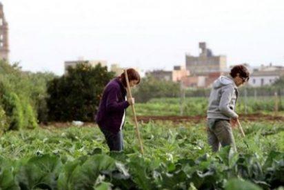 Podemos Extremadura respecto a las negociaciones del nuevo Programa de Desarrollo Rural