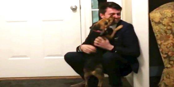 El emocionado encuentro de un perro con su dueño tras dos años sin verse