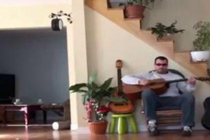 [Vídeo] La venganza del gato 'macetón' al cabezón que le da todo un patadón