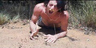 [Vídeo] El bocazas que casi es devorado por unas hormigas carnívoras chilla a rabiar