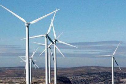 El 55% de las empresas de renovables están ampliando sus plantillas