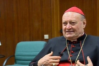 """El cardenal Ravasi comentará el """"Palabra y Vida 2016"""""""