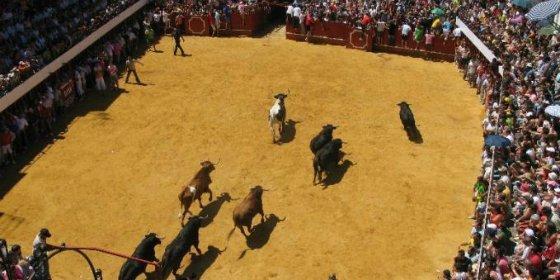 """Moraleja crea de nuevo la Comisión Popular de Festejos de """"San Buenaventura 2015"""""""