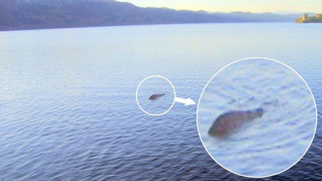 Ahora resulta que el monstruo del lago Ness es un dinosaurio que no se ha extinguido