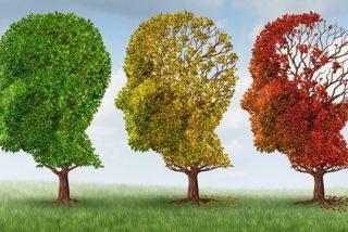 XVIII Jornadas del Alzheimer en el Centro San Camilo de Madrid