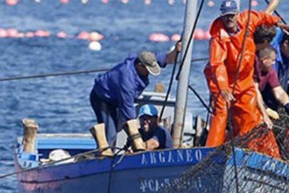 La Ruta Milenaria del Atún: el sabor del mar y la gastronomía gaditana a tus pies