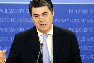 """Rojas (PP): """"La Junta ha sido una máquina de generar problemas para los ayuntamientos andaluces"""""""