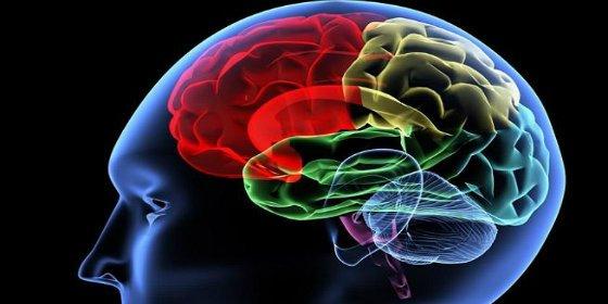 Las 6 formas de saber si tienes inteligencia emocional o eres un 'descocado'