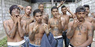 Las maras de El Salvador ofrecen una tregua por la beatificación de Romero