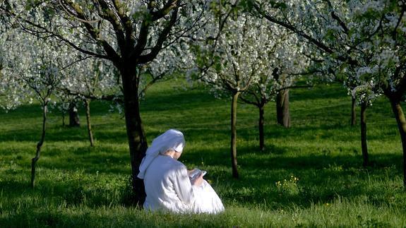 Primavera vocacional en Inglaterra