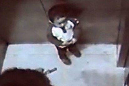 [Vídeo] El niño de 3 años que mata a su madre tirándola por el hueco del ascensor