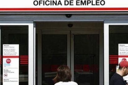 Nueva convocatoria de 1.000 becas de prácticas para jóvenes desempleados