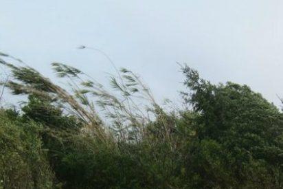 Esta tarde se activa una alerta por fuertes vientos en Extremadura