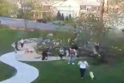 [Vídeo] ¡Drama en el parque! Un árbol cae sobre dos niños jugando