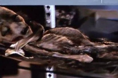 La foto del extraterrestre hallado en Roswell tomada por una piloto de la fuerza aérea de EEUU