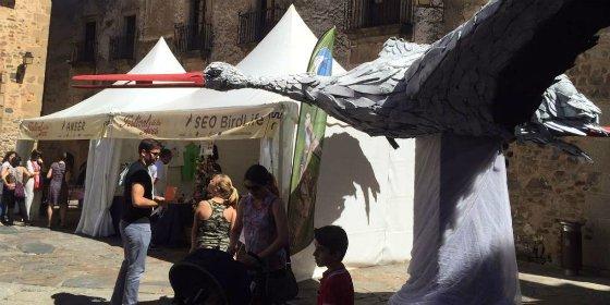 Las rutas ornitológicas del Festival de las Aves despiertan gran interés en Cáceres