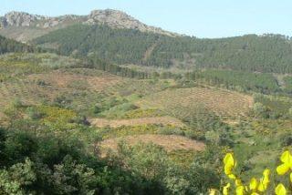 El Geoparque Villuercas-Ibores-Jara celebra su sexta Semana Europea