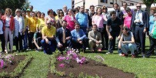 Un jardín dedicado al Oxígeno decora el Hospital de Mérida