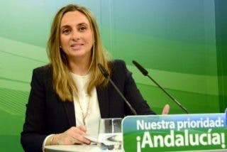 """Carazo (PP) exige a Susana Díaz que """"no utilice a los niños como rehenes de su incapacidad"""""""