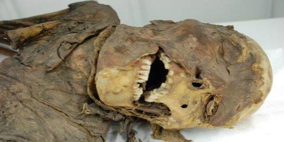 El muy ladrón roba la cabeza de una momia egipcia y la cambia por una bola de papel