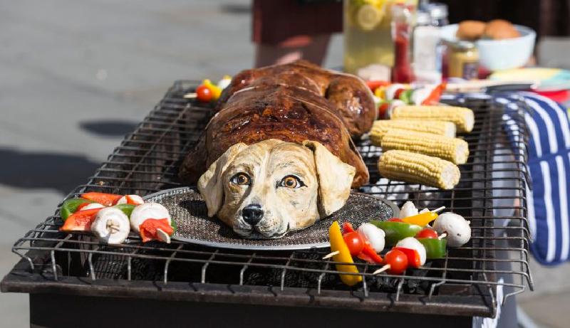 China prohibe a sus ciudadanos seguir comiendo carne de perro - Periodista  Digital