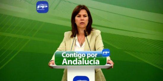 Ana Vanesa García (PP) denuncia el recorte de 14 millones en subvenciones a los colectivos más vulnerables