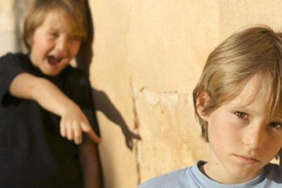 CEAPA pide un plan nacional contra el acoso escolar y un número de teléfono para víctimas