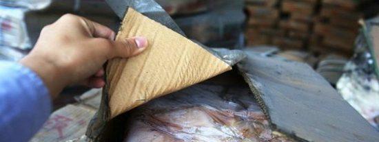 La 'carne zombi' que casi mata a los chinos apesta de lo lindo y tiene alas