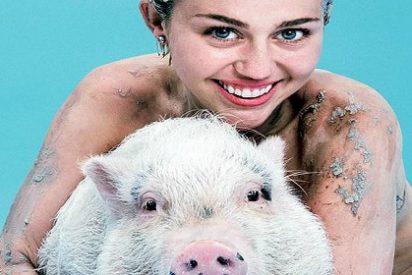 Las fotos de Miley Cyrus completamente desnuda en plan 'cerdita traviesa'