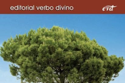 Nueva edición de los cursos de verano de Verbo Divino en Dueñas