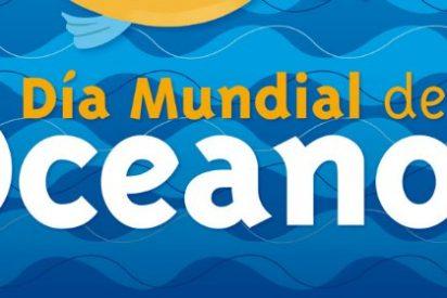 El Corte Inglés y MSC se unen en el Día Mundial de los Océanos