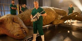La increíble autopsia a un Tiranousaurio Rex te dejará con la boca abierta
