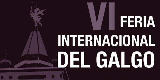 Feria Internacional del Galgo en la localidad sevillana de El Viso del Alcor