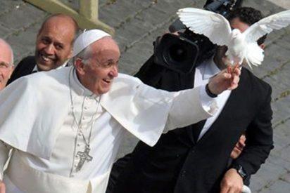 Malestar en la Santa Sede por la filtración de un borrador de la encíclica sobre ecología
